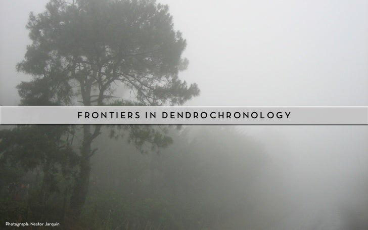 FRONTIERS IN DENDROCHRONOLOGYPhotograph: Nestor Jarquin