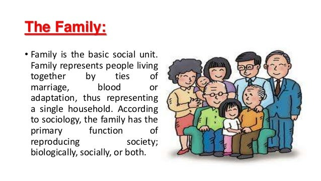 Different types of family structures