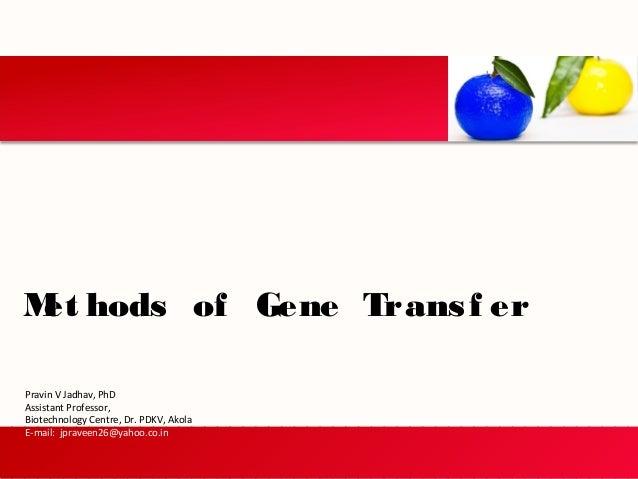 Met hods of Gene Transf er Pravin V Jadhav, PhD Assistant Professor, Biotechnology Centre, Dr. PDKV, Akola E-mail: jpravee...