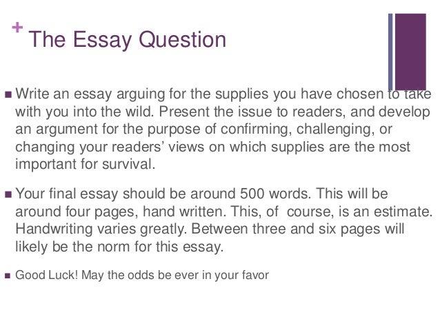 class in class in class essay