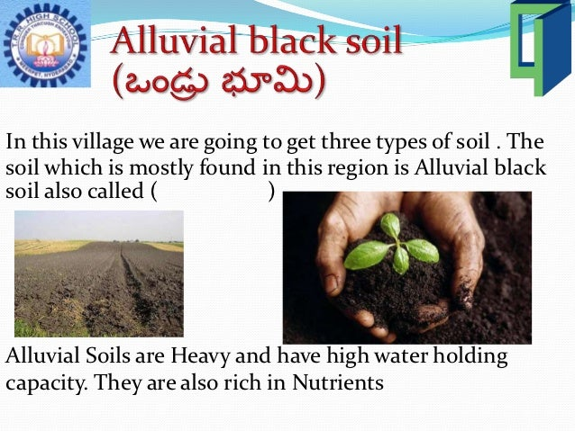 Class 6 social penamakuru 1 for What is rich soil called
