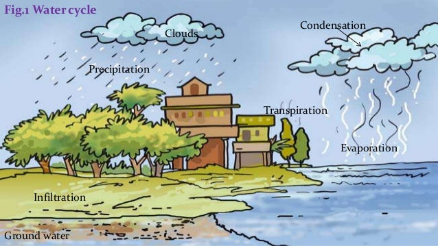 Class 7 science chapter 16 water 6 fig1 water cycle ccuart Image collections