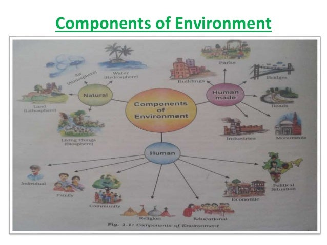 components of environment What is meant by biotic components in environment all living things depend on their surroundings for food, water, and shelter all that surrounds living things and affects their growth and development is called their environment.