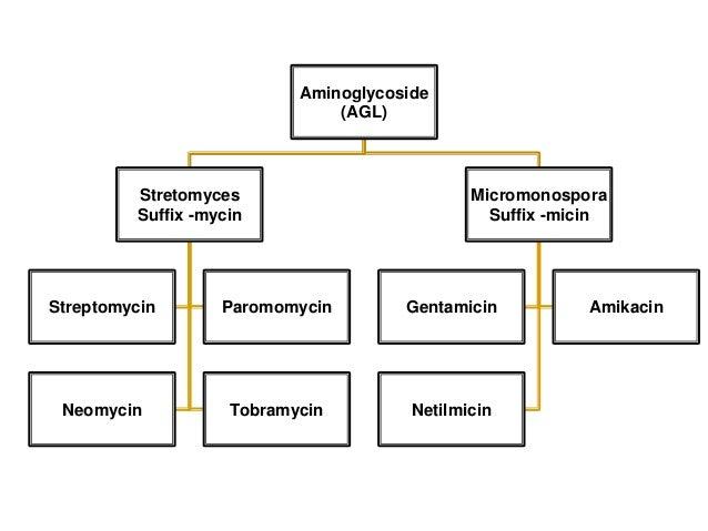 Class aminoglycosides 2