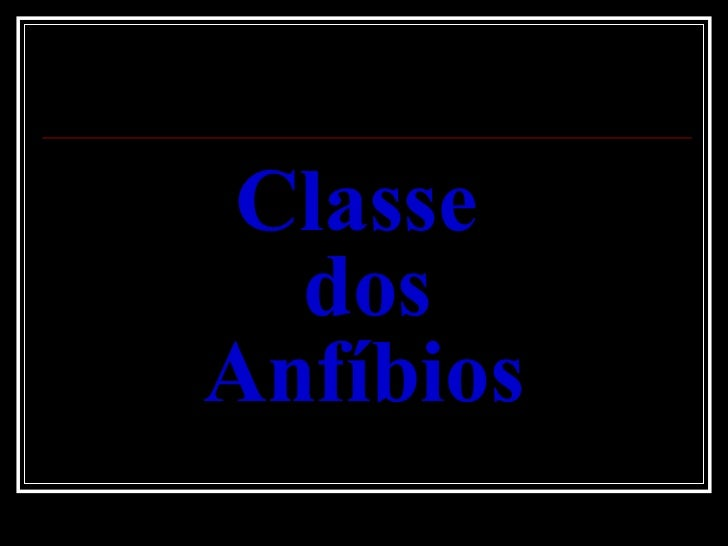 Classe Dos AnfíBios Slide 2