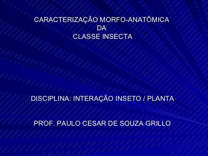 CARACTERIZAÇÃO MORFO-ANATÔMICA  DA  CLASSE INSECTA DISCIPLINA: INTERAÇÃO INSETO / PLANTA PROF. PAULO CESAR DE SOUZA GRILLO