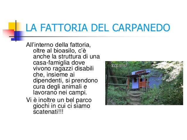 LA FATTORIA DEL CARPANEDO All'interno della fattoria, oltre al bioasilo, c'è anche la struttura di una casa-famiglia dove ...