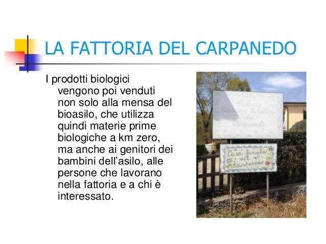 LA FATTORIA DEL CARPANEDO I prodotti biologici vengono poi venduti non solo alla mensa del bioasilo, che utilizza quindi m...