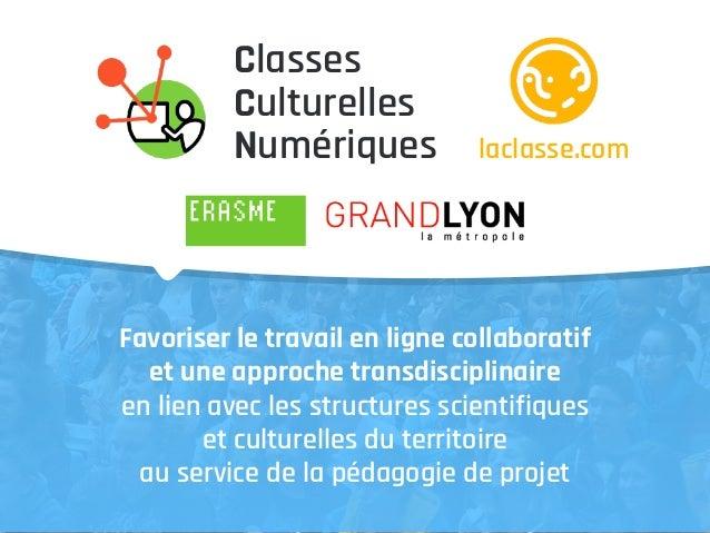 Favoriser le travail en ligne collaboratif et une approche transdisciplinaire en lien avec les structures scientifiques et...