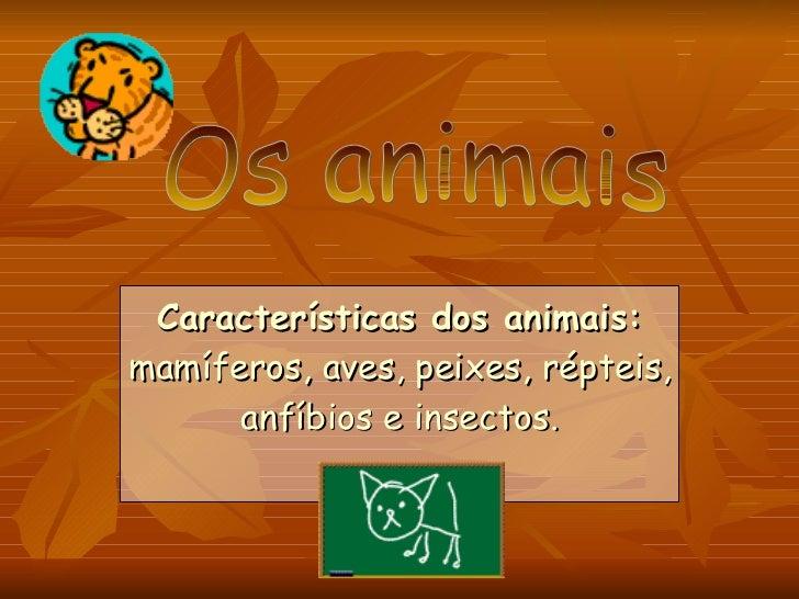 Características dos animais:  mamíferos, aves, peixes, répteis, anfíbios e insectos. Os animais