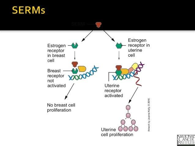 Class estrogens and antiestrogens