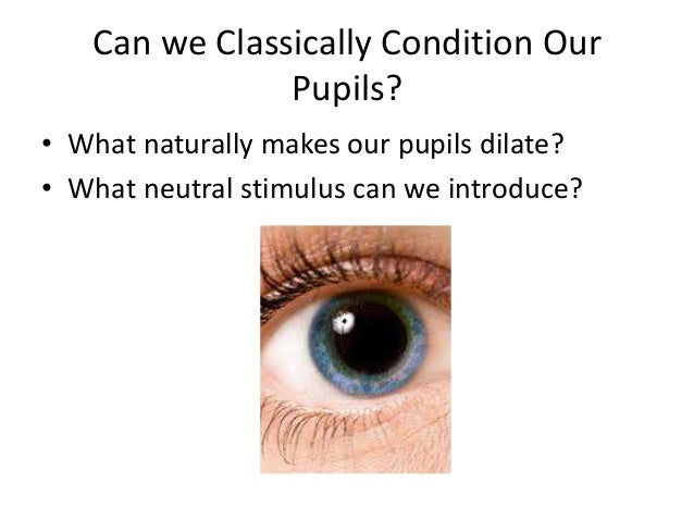 classical conditioning and the pupil dilation Ap learning ss 1 classical conditioning basics involuntary behaviors • • • • • • • eye blink pupil dilation flinching salivating.