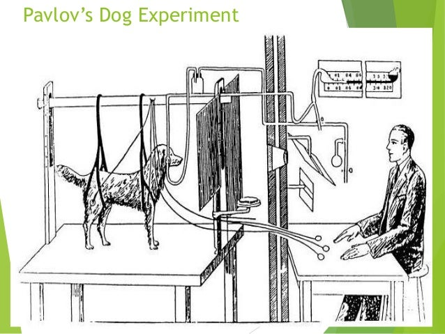 Classical conditioning Slide 3
