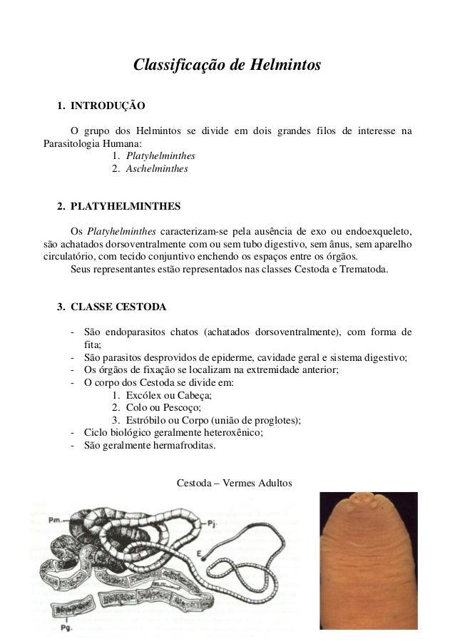 Classificação de Helmintos  1. INTRODUÇÃO  O grupo dos Helmintos se divide em dois grandes filos de interesse na  Parasito...