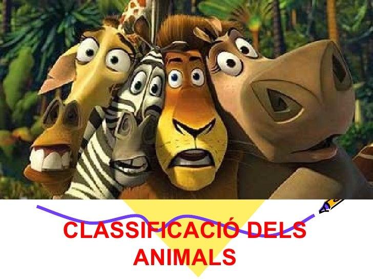 CLASSIFICACIÓ DELS NIMALS CLASSIFICACIÓ DELS ANIMALS