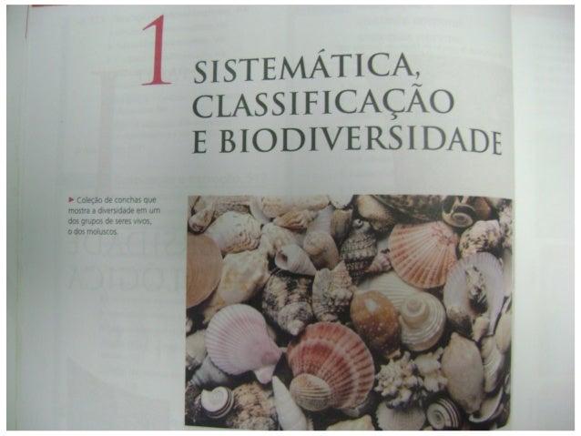 0 que e SistemáticaSistemática é o ramo da Biologia queestuda a diversidade biológica, oubiodiversidade, isto é, os tipos ...