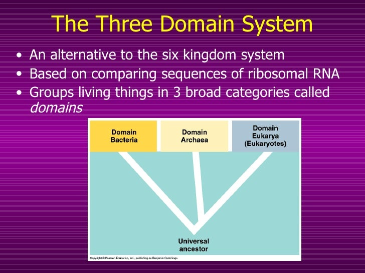 three domain system of classification In his book generelle morphologie der organismen suggested a three-kingdom system system of classification did three-domain classification has.
