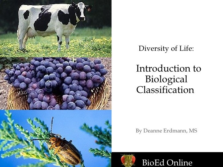 Diversity of Life:   Introduction to Biological Classification   By Deanne Erdmann, MS BioEd Online