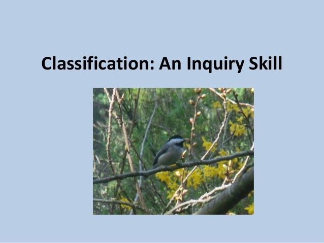 Classification: An Inquiry Skill