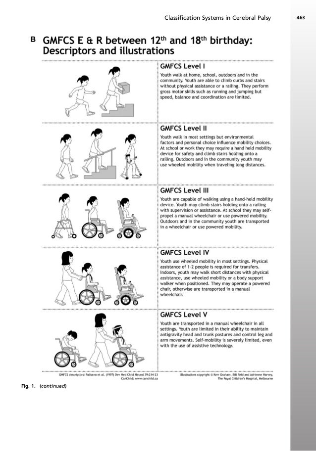 zancolli classification hand function scale The international classification of functioning, disability and health (icf) and the place of our scales in the health process.