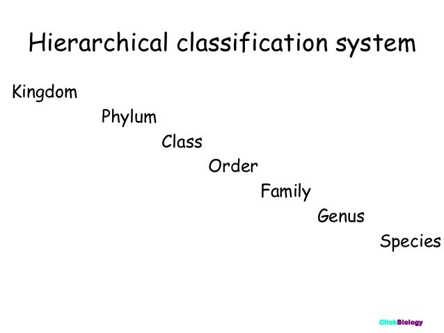 Classification And Keys