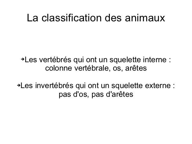 La classification des animaux