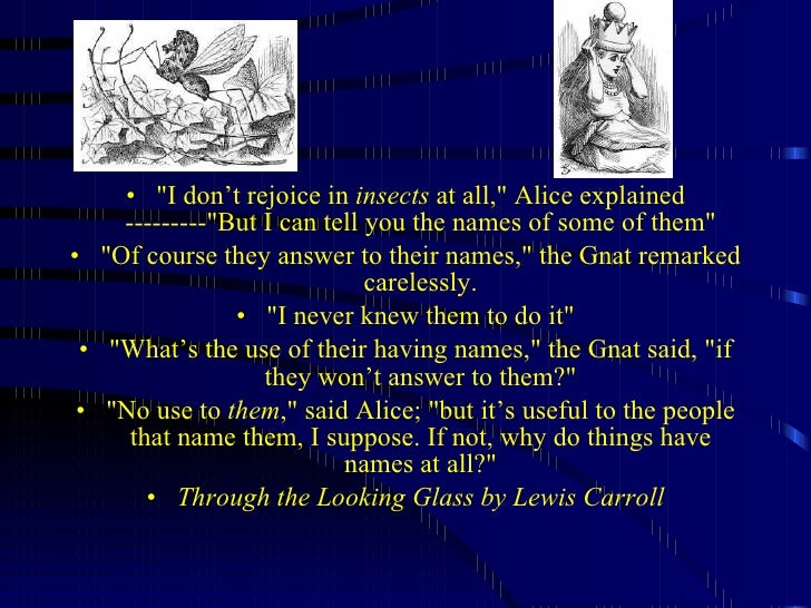 "<ul><li>""I don't rejoice in  insects  at all,"" Alice explained ---------""But I can tell you the names of so..."