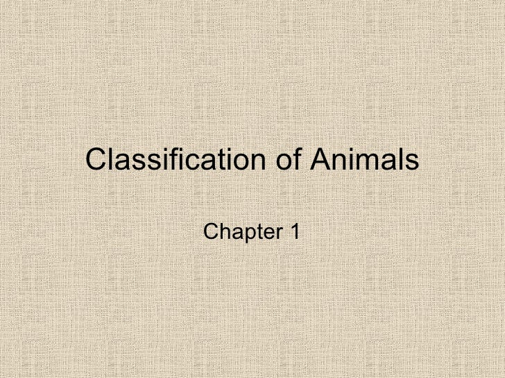 Classification of Animals Chapter 1