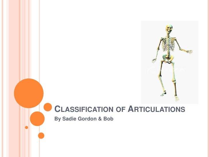 Classification of Articulations<br />By Sadie Gordon & Bob<br />