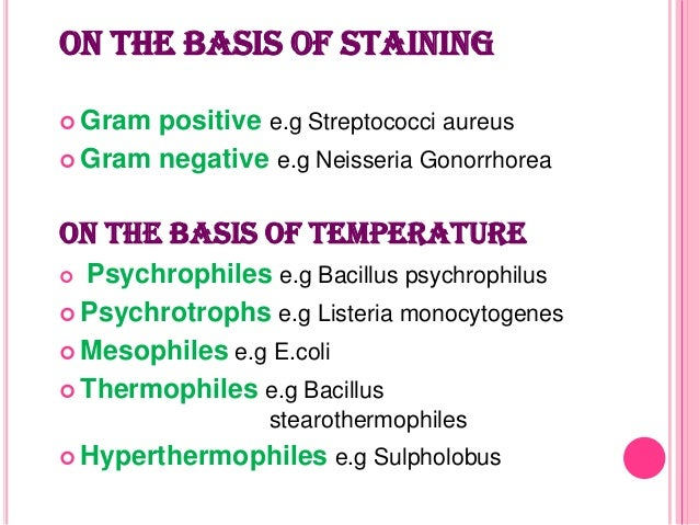 classification of bacteria For example it may contain a gene that makes the bacterium resistant to a certain  antibiotic bacteria are classified into 5 groups according to their basic shapes:.