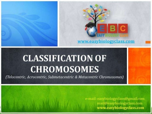 For detailed description of this topic, please click on: http://www.easybiologyclass.com/classification-of-chromosome-base...