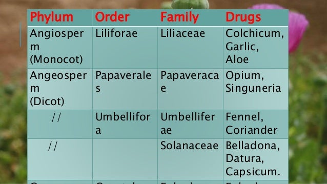 Advantages:-  Useful to study evolutionary development of drugs.  As all families have distinguishing characteristics, s...