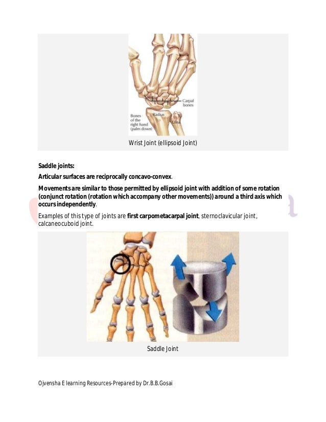 Classification Of Joints Drgosai