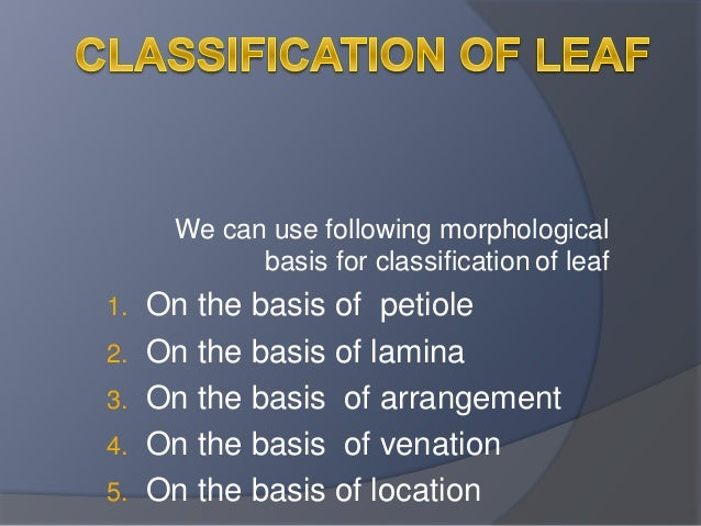 We can use following morphological  basis for classification of leaf  1. On the basis of petiole  2. On the basis of lamin...