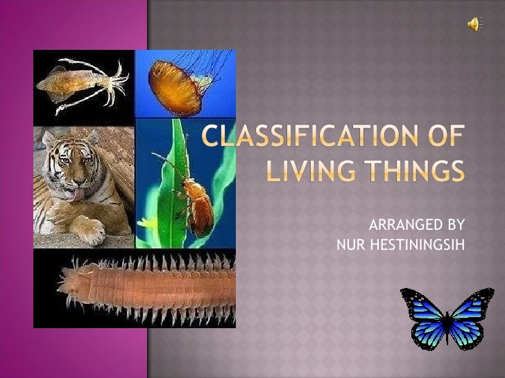 Cl Ification Of Living Things 1 728 Jpgcb1267055214