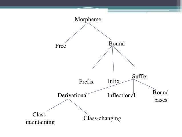 MorphemeFree BoundPrefix InfixSuffixDerivational Inflectional BoundbasesClass-maintainingClass-changing