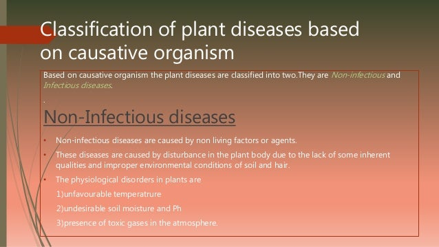 classification of organisms essay Classification of organisms organisms are often grouped into five kingdoms organisms are grouped because the ones that are in the same group share certain common characteristics these groups are: monera (bacteria), protoctista (protists).