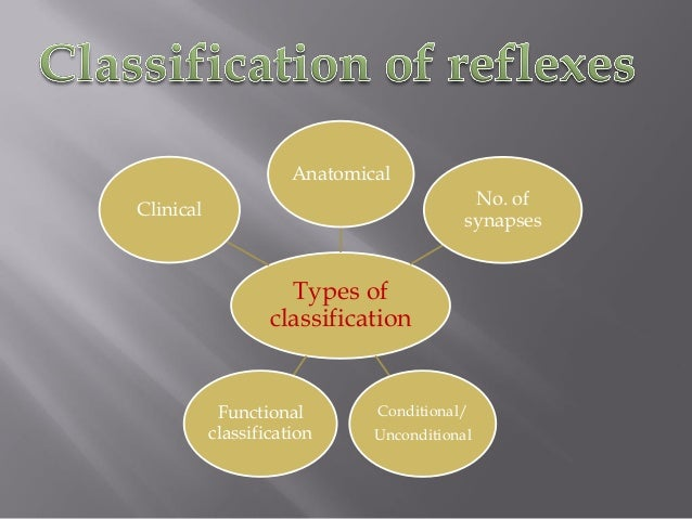 Types of classification Anatomical No. of synapses Conditional/ Unconditional Functional classification Clinical