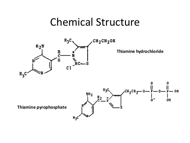 thiamine functions and structure However, the role of thiamine biosynthesis genes in roots remains uncertain   important for thi1 structure and, thus, may not completely disrupt thi1 function.