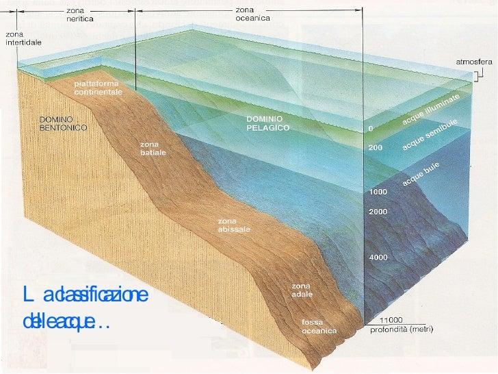 La classificazione delle acque…