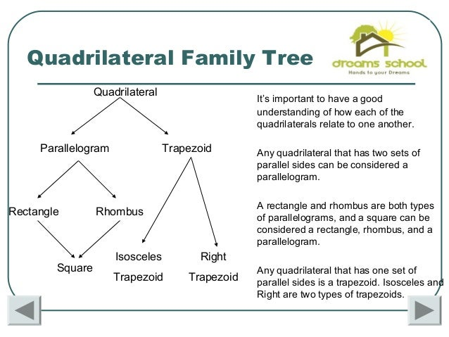 Classify polygons quadrilateral family tree ccuart Gallery