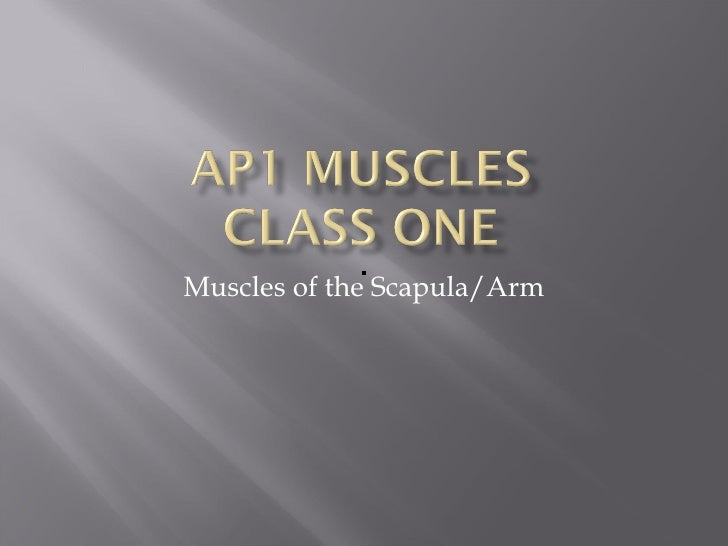 Muscles of the Scapula/Arm