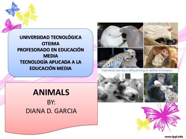 ANIMALS BY: DIANA D. GARCIA UNIVERSIDAD TECNOLÓGICA OTEIMA PROFESORADO EN EDUCACIÓN MEDIA TECNOLOGÍA APLICADA A LA EDUCACI...
