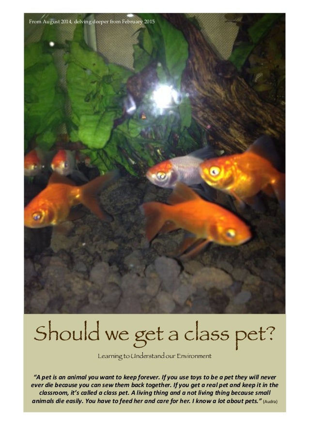 """From August 2014, delving deeper from February 2015 Should we get a class pet? Learning to Understand our Environment """"A ..."""