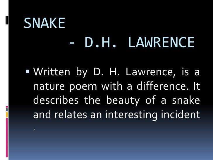 D H Lawrence Snake Essays