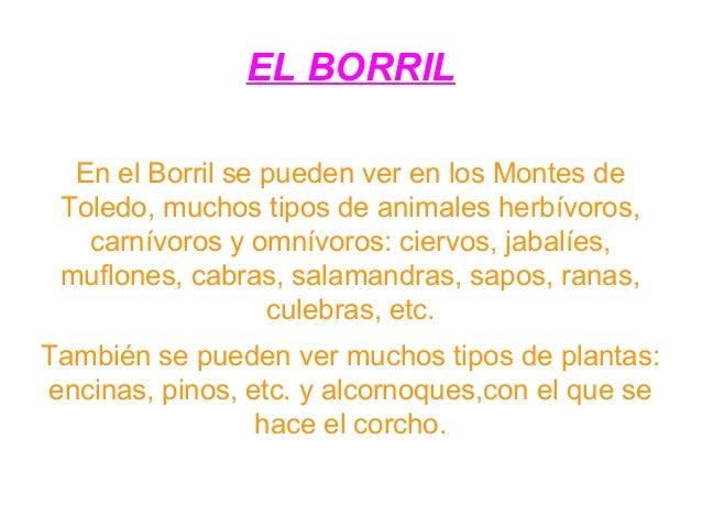 EL BORRIL En el Borril se pueden ver en los Montes de Toledo, muchos tipos de animales herbívoros, carnívoros y omnívoros:...