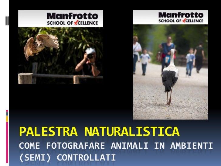 PALESTRA NATURALISTICACOME FOTOGRAFARE ANIMALI IN AMBIENTI(SEMI) CONTROLLATI