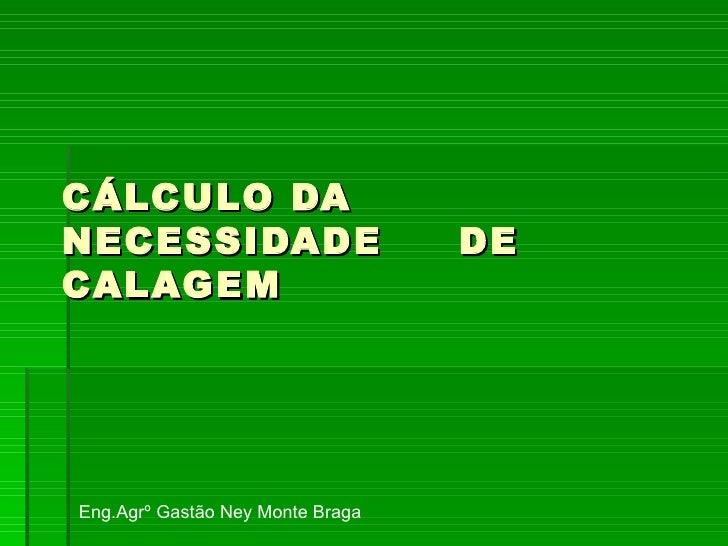 CÁLCULO DA NECESSIDADE  DE CALAGEM Eng.Agrº Gastão Ney Monte Braga