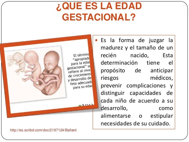 ¿QUE ES LA EDAD GESTACIONAL?  Es la forma de juzgar la madurez y el tamaño de un recién nacido, Esta determinación tiene ...