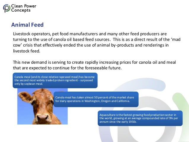 Animal Feed Livestock operators, pet food manufacturers and many other feed producers are turning to the use of canola oil...